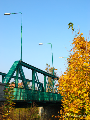 Most Marszowicki