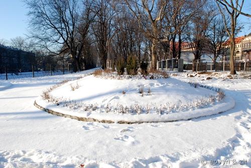 powrót zima Wrocław